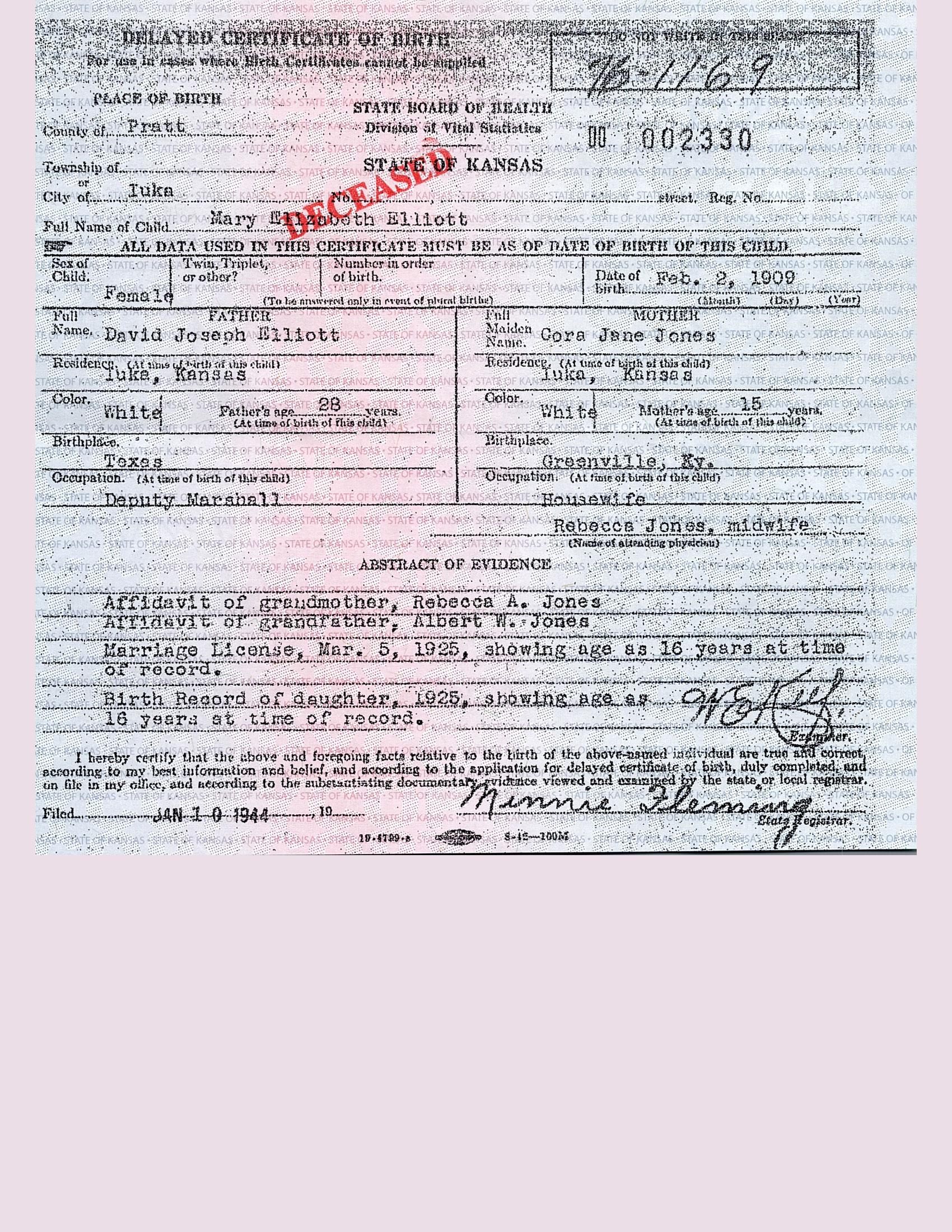 reason for delayed birth records